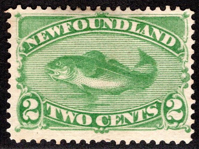 26, NSSC, Newfoundland, 2c, green, 1870, Codfish, MNG, F