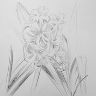 Flower two
