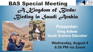 A Kingdom of Birds: Birding in Saudi Arabia