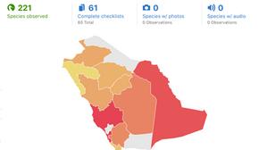 Saudi Arabia's First October Big Day of Birding