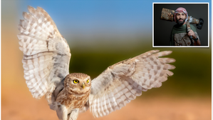 Our Man in Al Jawf: An Interview with Wildlife Photographer Nader Fahad Al Shammari