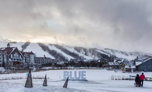 blue mountain.jpg