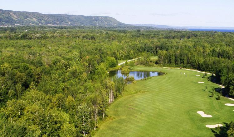 Collingwood golf.jpg