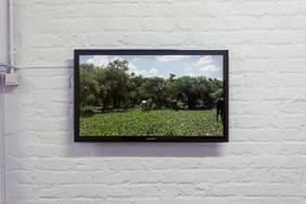 Work by Mario Londoño
