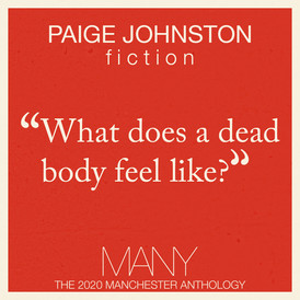 Paige Johnston's Submission