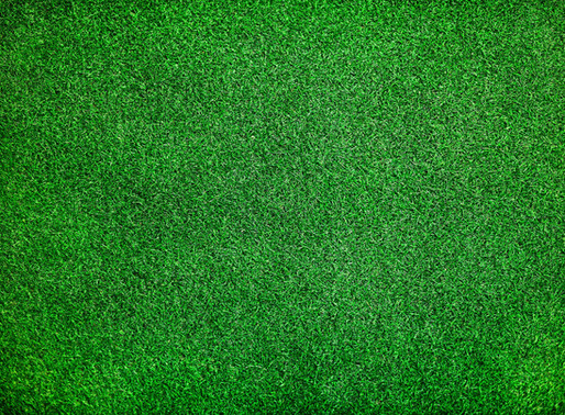 Artificial Grass - A Buying Guide!
