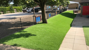 A Guide to a New Lawn