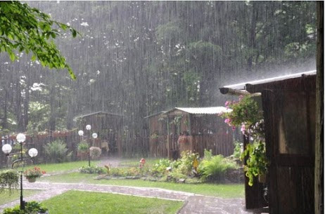 How To Protect Your Lawn From Weather Damage