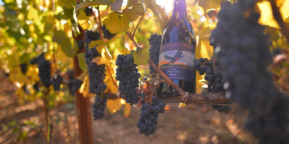 Bluebird Hill Wine tasting at Second & Vine Bistro