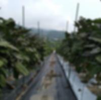 スクリーンショット 2019-10-24 15.37.01.png