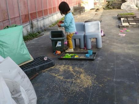 本日のお野菜セット(2019/1/23)