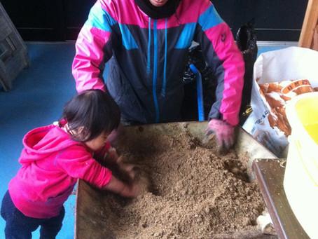 今日は家族で肥料作り