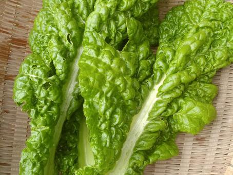 本日のお野菜セット(2018/12/3)
