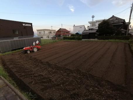 本日のお野菜セット(2021/9/1)
