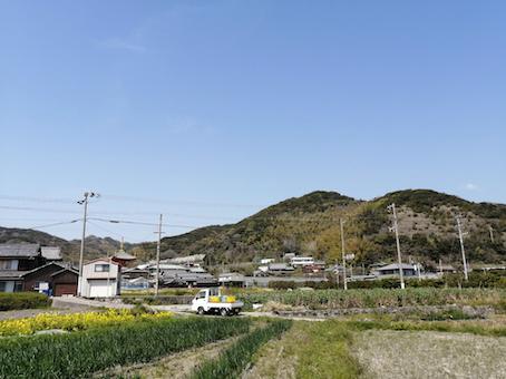 本日のお野菜セット(2021/4/2)