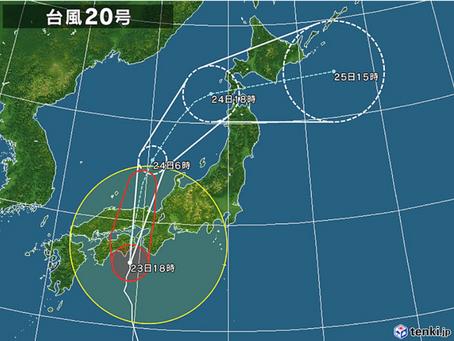 本日のお野菜セット(2018/8/23)