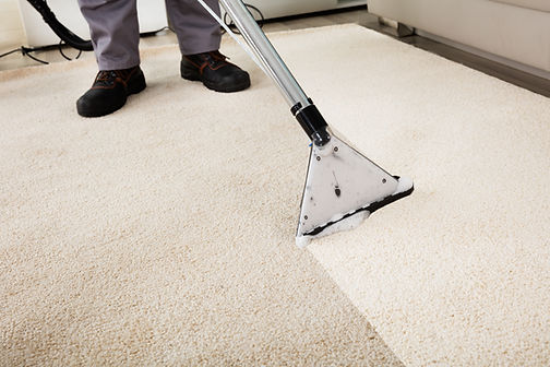 Best carpet cleaning company in stirling