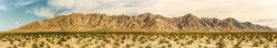 Mojave Desert Projects