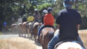 cjg_horse_trail_2.jpg