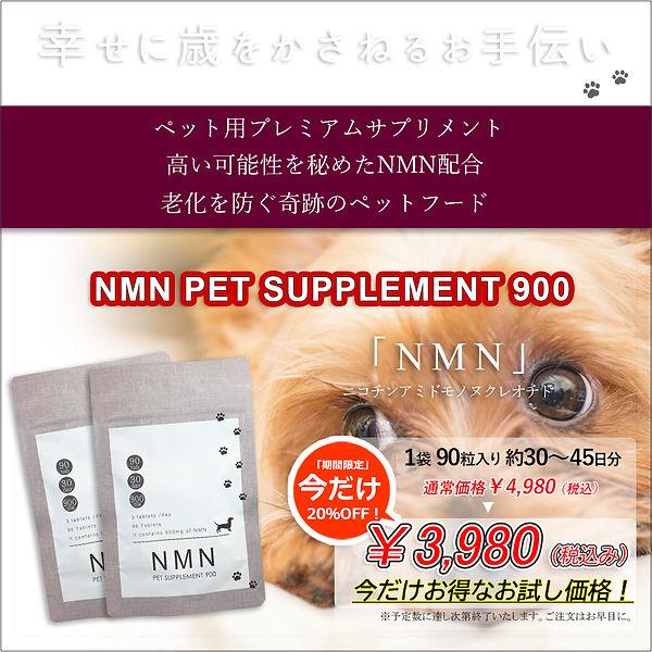 NMNLP001.jpg