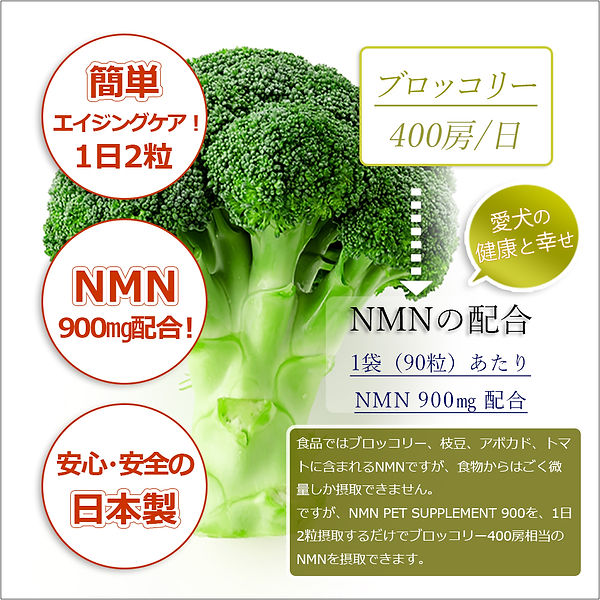 NMNLP004.jpg