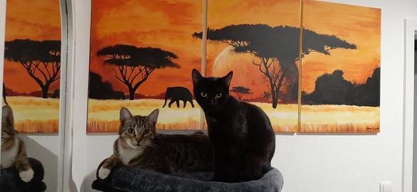 Shiela & Willow