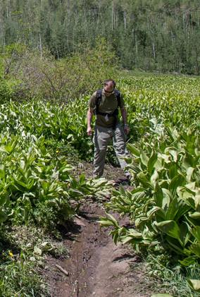 Rough Trail around Lower Cataract Lake