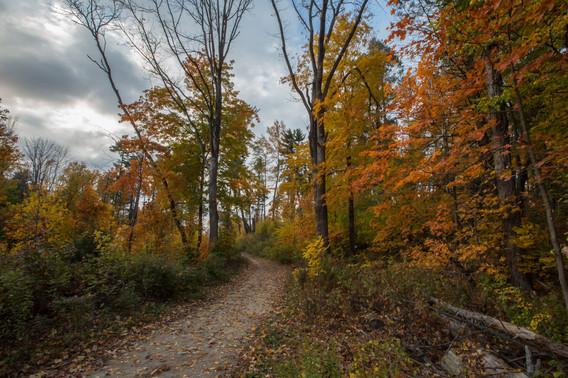 Dudley Porter Trail