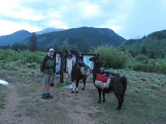 John with the Llamas