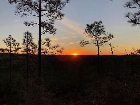 Backbone sunrise.jpg