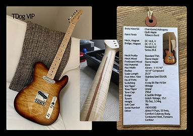 Webpic custom guitar TDog VIP.jpg