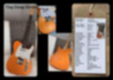Webpic TDog Orange.jpg