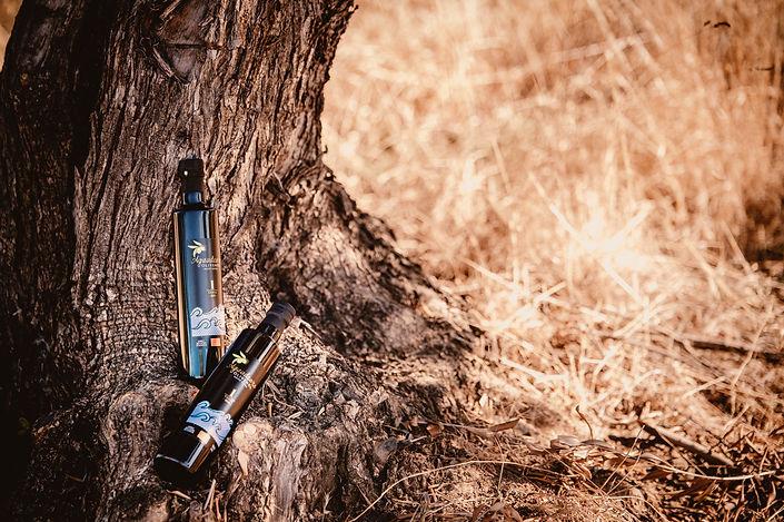 Olivenölfalschen, Olivenbaum, Stroh, Natur.jpg