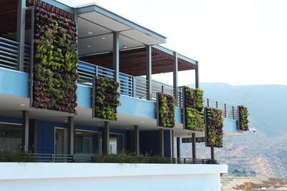 Nave Industrial Sunpower Ensenada.jpg