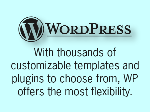 options of wordpress.png