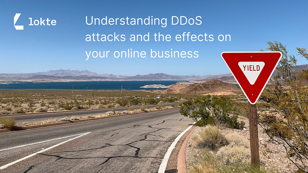 Lokte | eCommerce Security | DDoS
