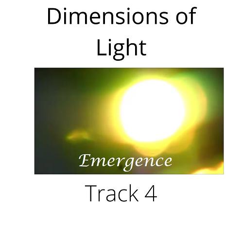 Track 4   'Emergence'
