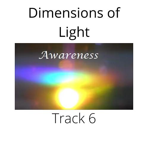 Track 6 'Awareness'