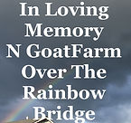 RainbowOverHouse.JPG