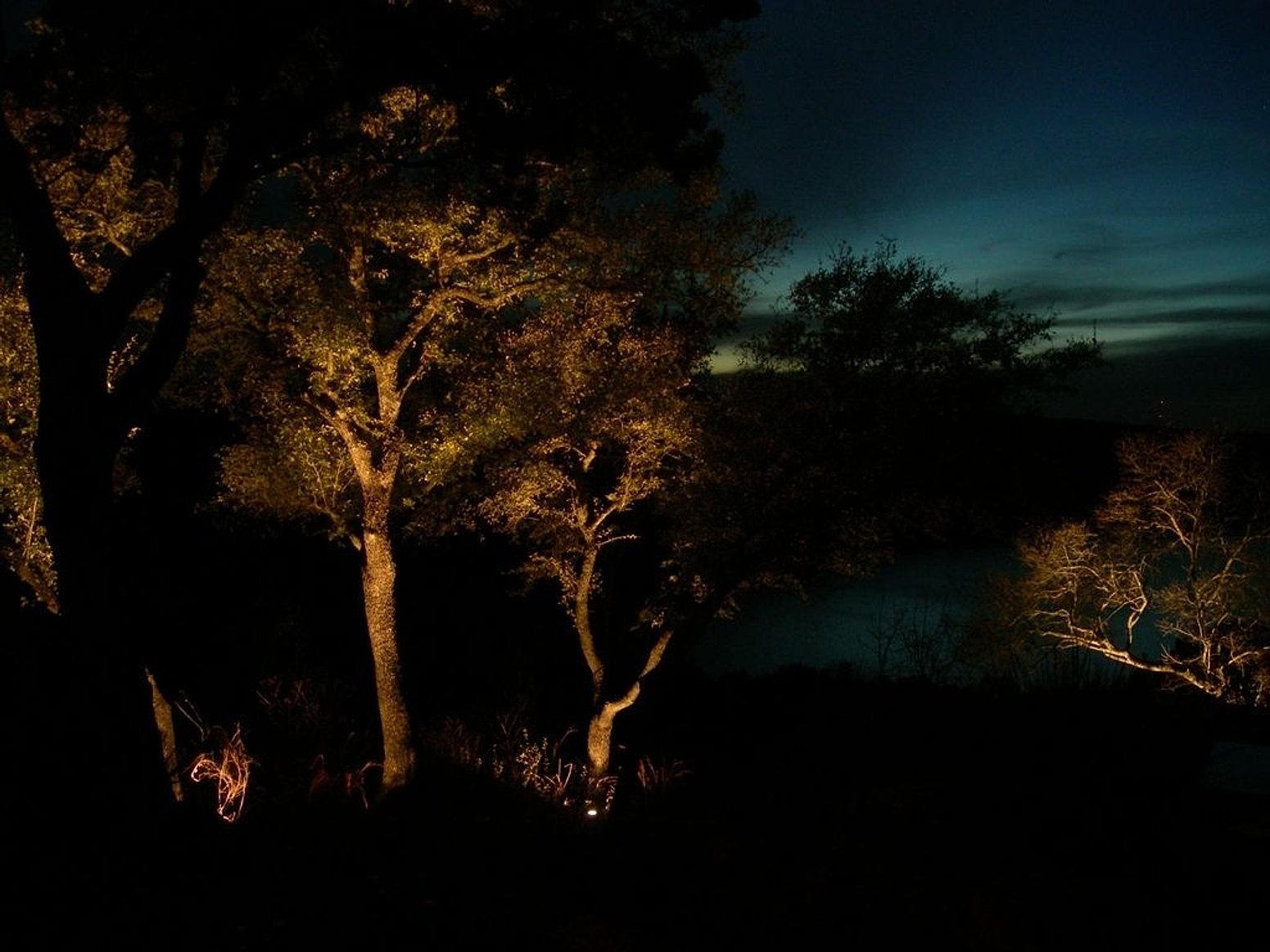 Lux Outdoor Lighting| Landscape Lighting| Austin, TX.| San Antonio ...