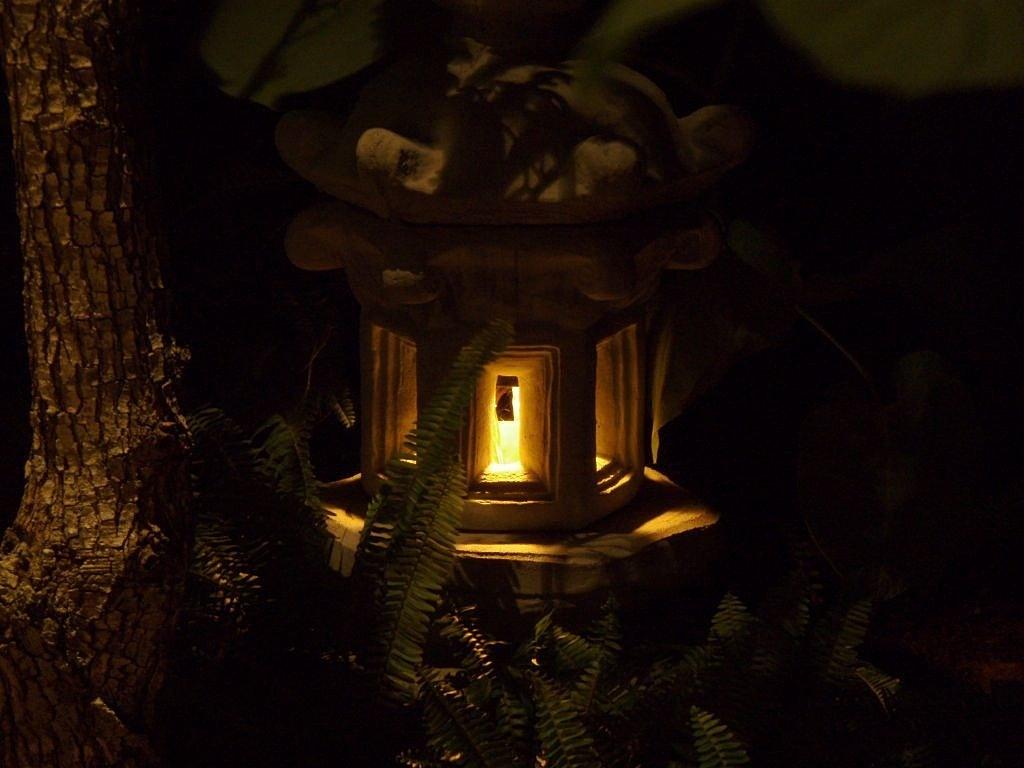 Lux Outdoor Lighting| Landscape Lighting| Austin, TX.| San Antonio