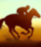 Rival Stars Horse Racing image assets 5.