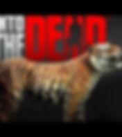 Untamed Tiger Image_edited.jpg