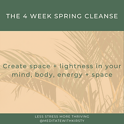 SPRING CLEANSE (12).png