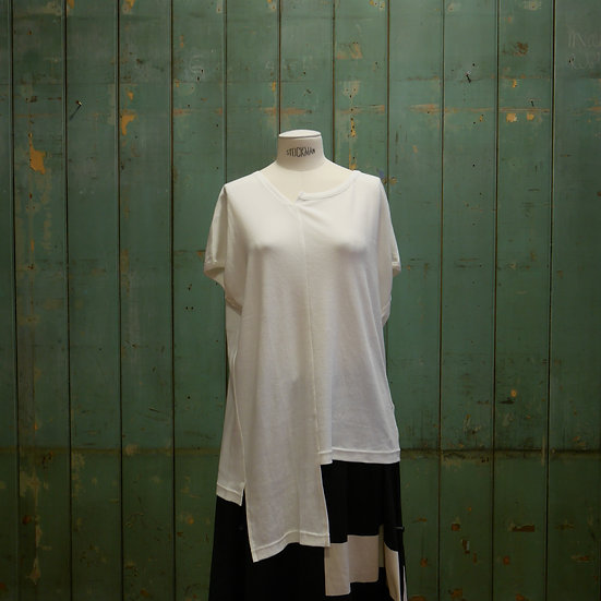 Y's Asymmetric French Top