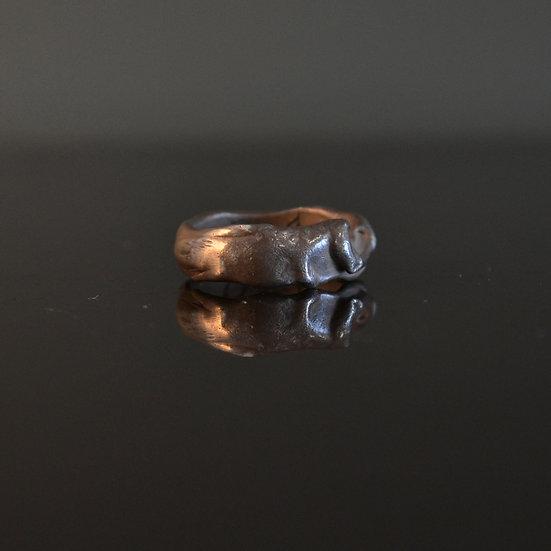 6x4 Drip Ring