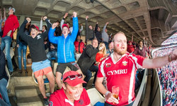 Lions supporters at Emirates Park