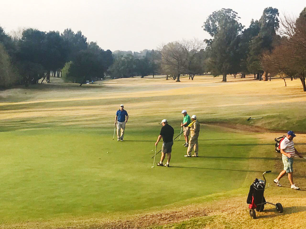 SWB Sports Golf Day