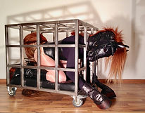 pony pet play fetish cage confinement