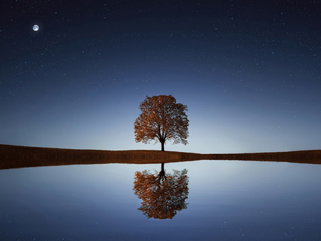 Reflection and Envisioning